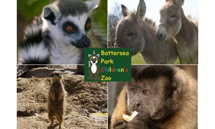 Battersea-Childrens-Zoo